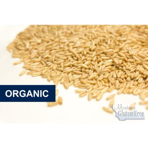 Organic Naked Oats - 50lb Paper Bag