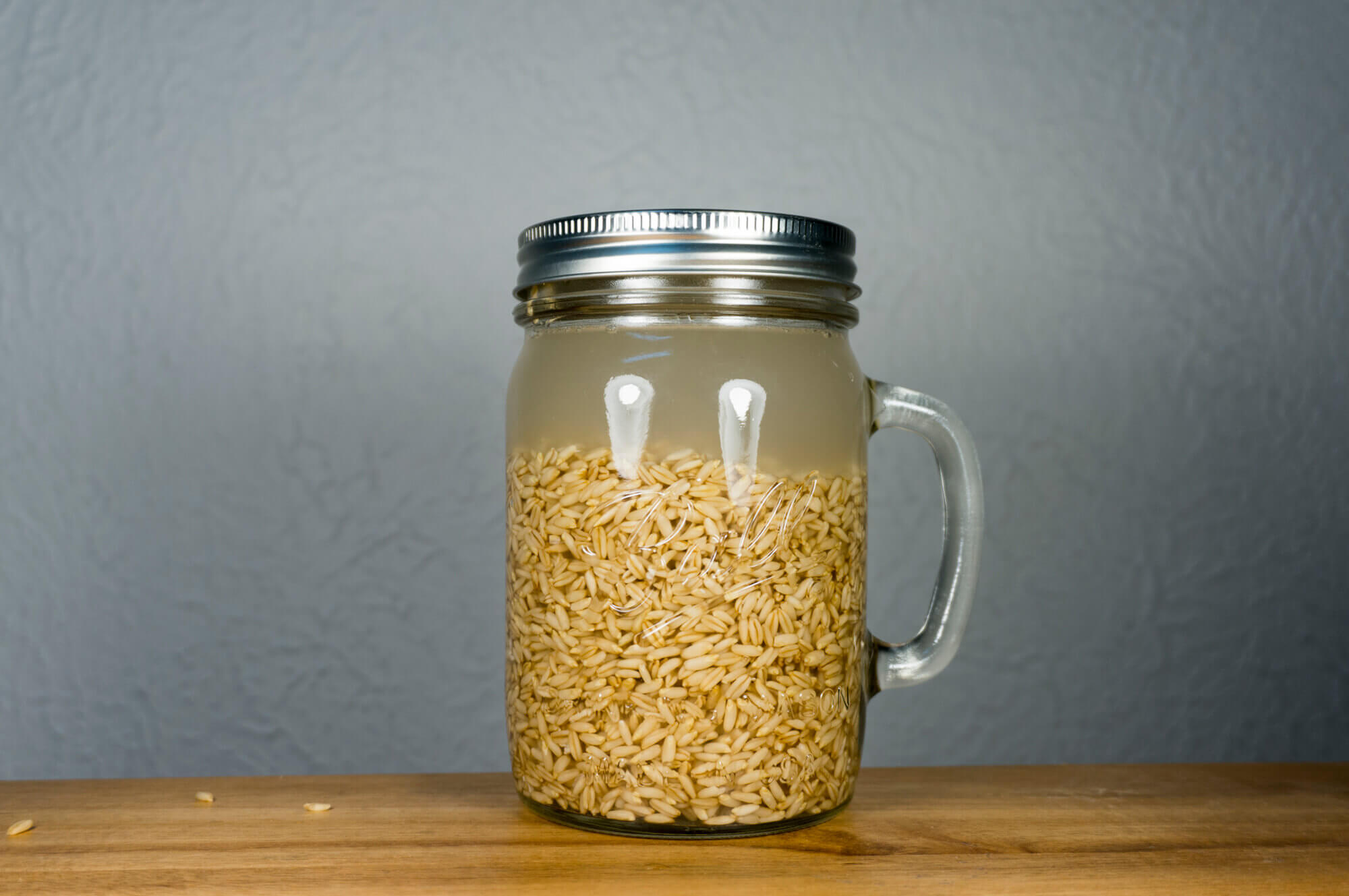 Sprouting Naked Oats - Step 2
